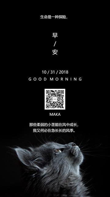 日签早安早晚安心情语录品牌传播猫语