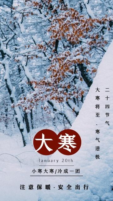 文艺清新大寒日签 二十四节气 节气宣传普及