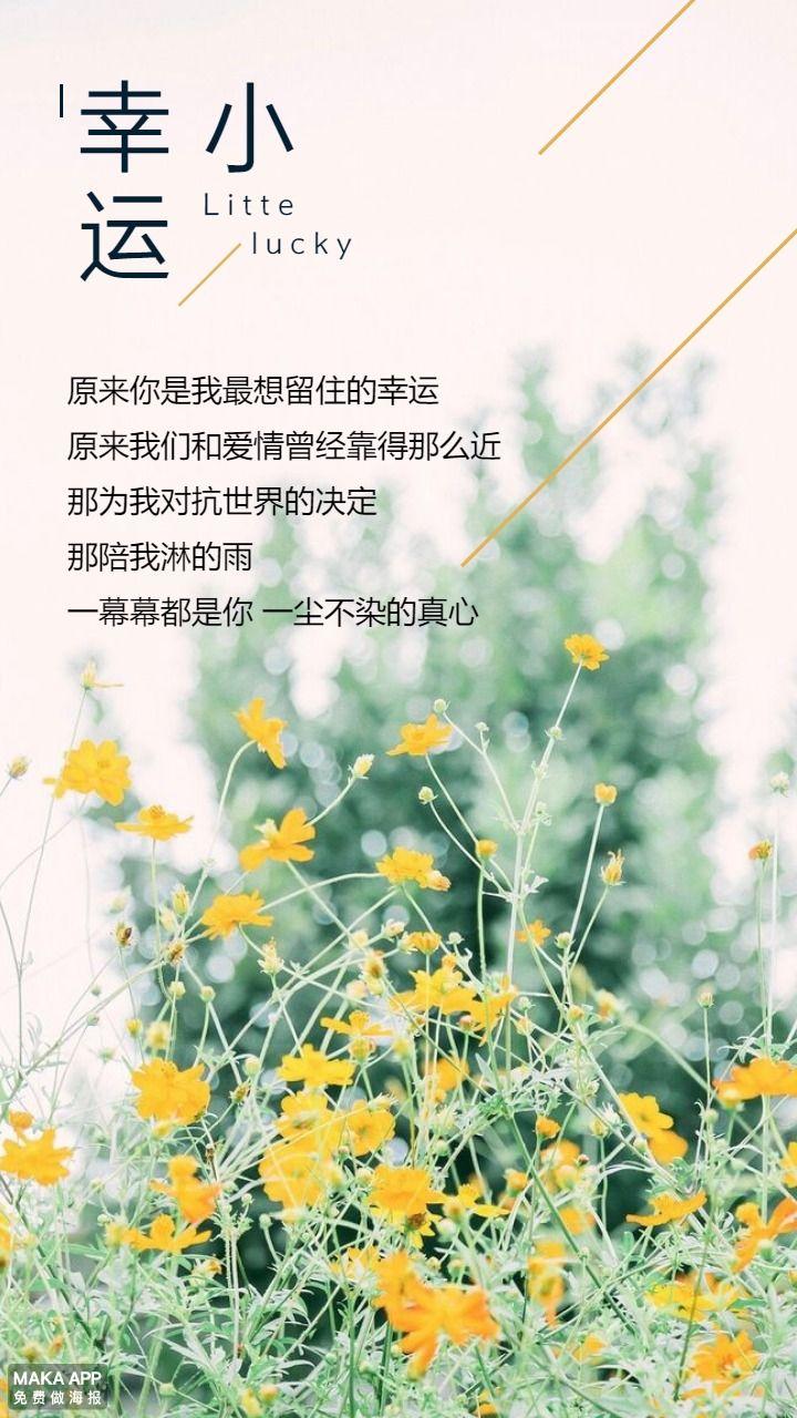 高清文艺小雏菊摄影小幸运/小确幸心情日记