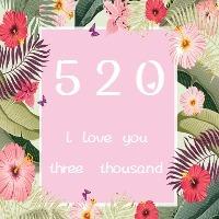 520唯美浪漫告白日表白日公众号次条