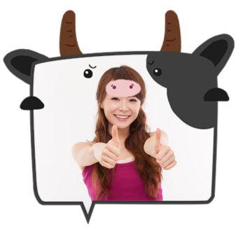 卡通可爱动物微信社交平台头像