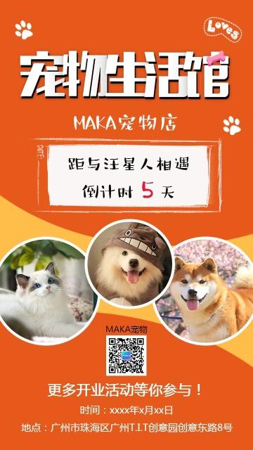 橙色简约可爱宠物店开业倒计时促销海报