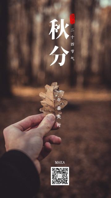 秋分时节秋祭月二十四节气秋燥养阴