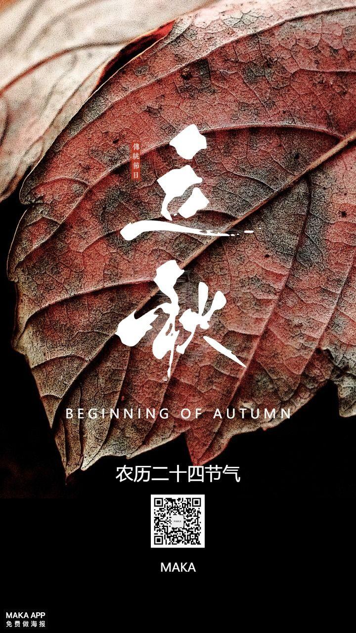 立秋二十四节气暑去凉来落叶知秋叶子秋色