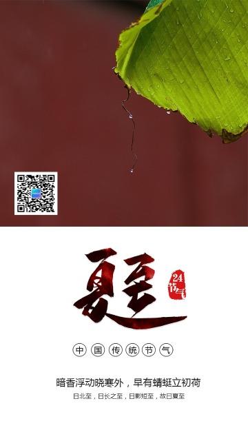 简约文艺夏至节气日签手机海报