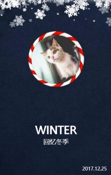 冬季相册/记录