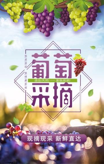 葡萄采摘 水果店促销 农家乐 棋牌麻将 钓鱼 文艺小清新