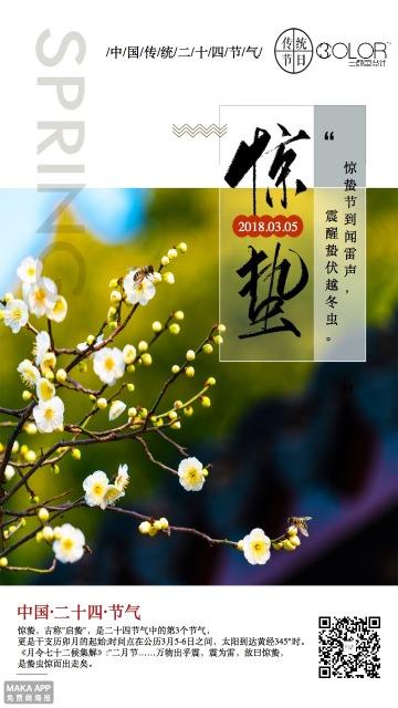 传统惊蛰二十四节气企业通用清新文艺宣传海报(三颜色设计)