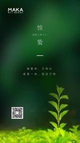 绿色简约二十四节气之惊蛰时节海报