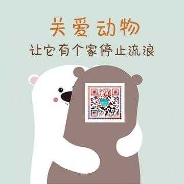 关爱动物小熊抱抱二维码
