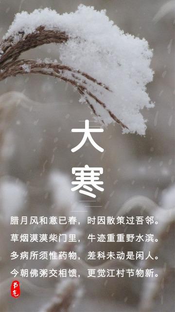 灰色简约二十四节气大寒节气手机朋友圈宣传图