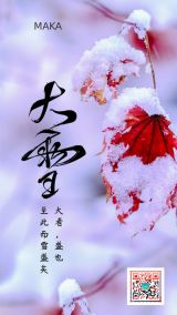 白色清新文艺风传统二十四节气大雪冬天手机宣传海报
