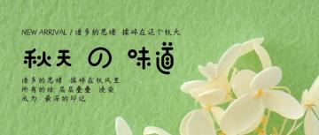 清新文艺秋天味道微信文章头图封面通用宣传