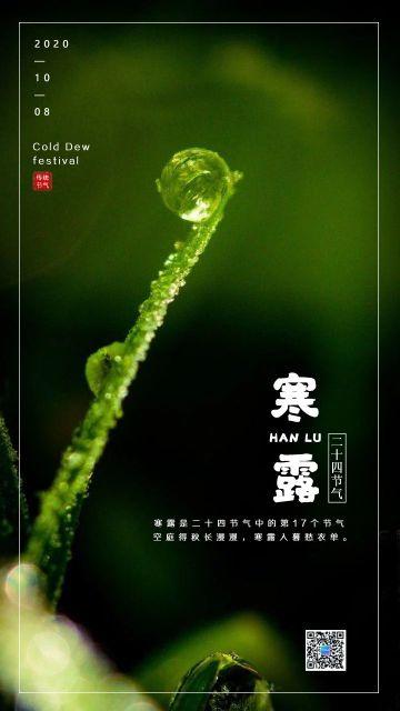 绿色简约寒露节气宣传手机海报