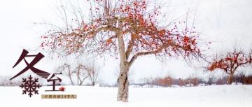 红色清新文艺冬至节气日签公众号首图