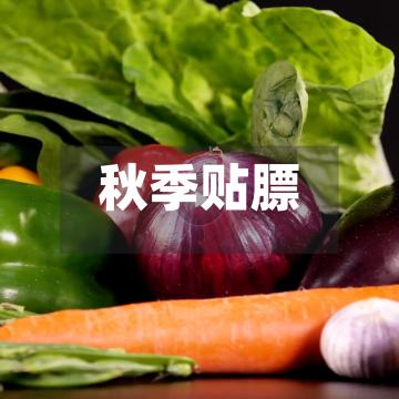 秋季贴膘新菜促销宣传