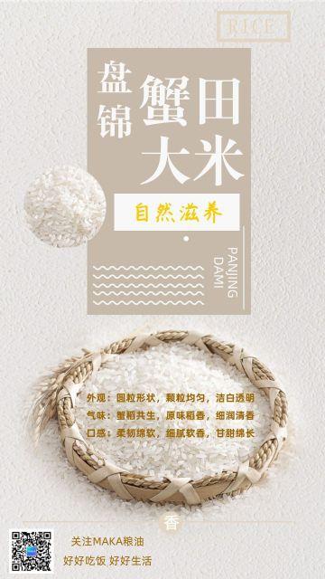 清新自然风商业零售优质大米油粮宣传海报