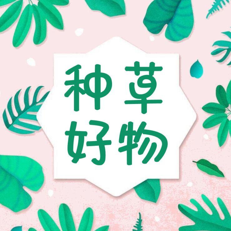 【促销次图】微信公众号封面小图文艺小清新通用-浅浅