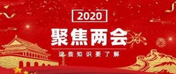 红色扁平2020两会报告党政宣传公众号首图