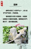 霜降 二十四节气 霜降节日介绍 霜降习俗普及  霜降习俗宣传