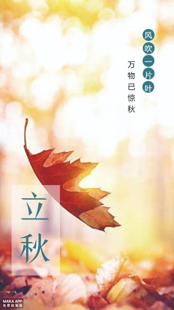 立秋,节气,习俗,节日,落叶