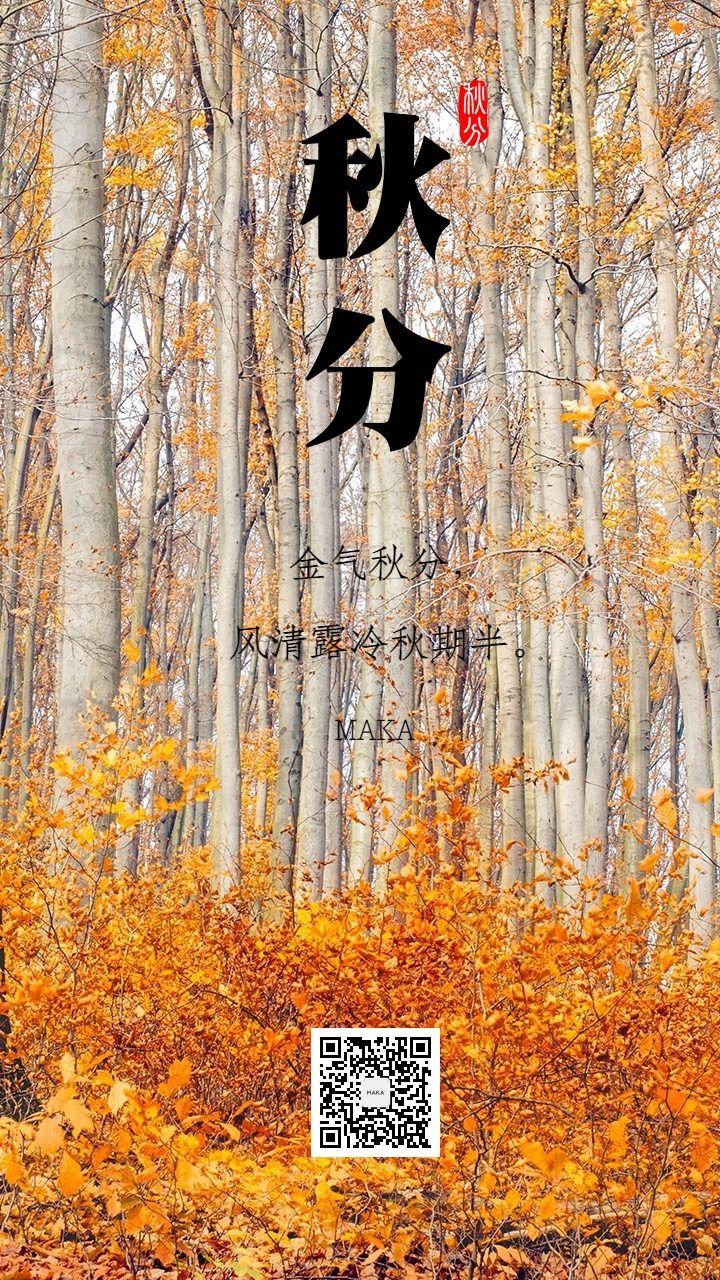 秋分时节秋祭月二十四节气秋意