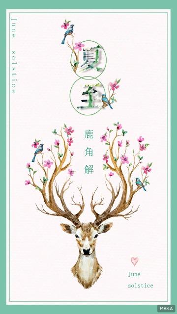 中国二十四节气之夏至白色调简约风格