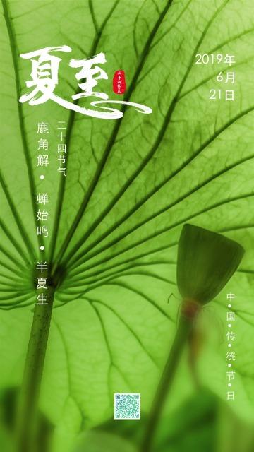 淡绿色清新简约设计风格二十四节气之夏至宣传海报
