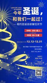 圣诞节2020年蓝色时尚绚丽大气宣传活动海报