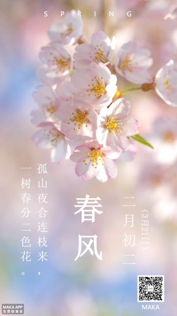 春分季节海报粉色梦幻节气