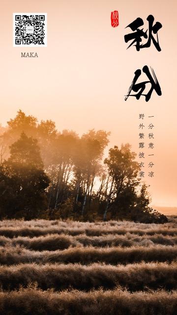 秋分时节秋祭月二十四节气秋分一夜停