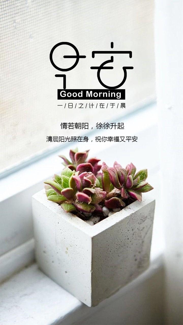 文艺清新早安日签早安问候语