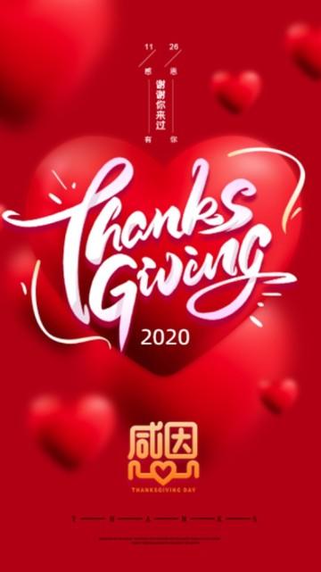 红色简约大气风格感恩节商家促销宣传视频