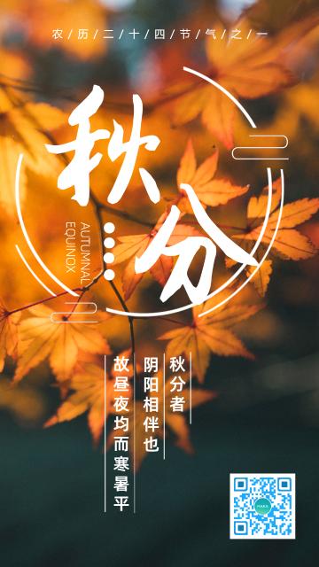 金秋时节二十四节气之秋分宣传海报