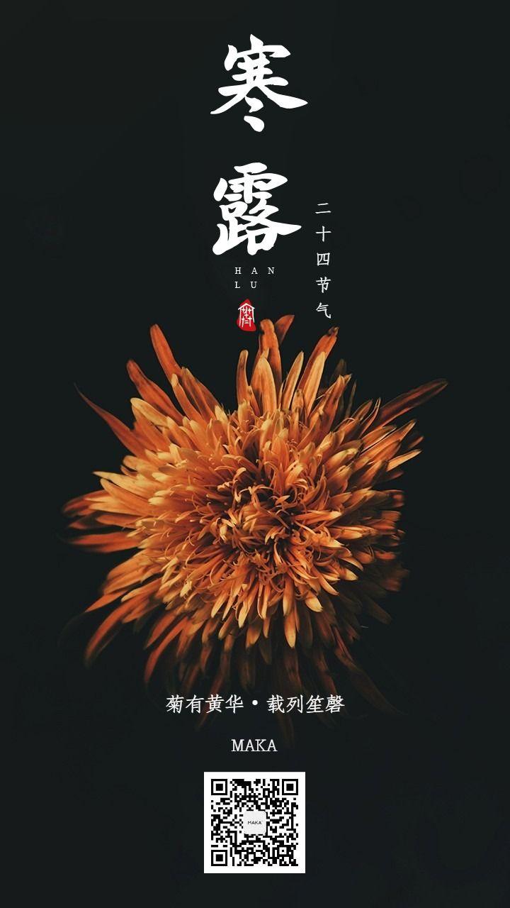 寒露二十四节气橙色黑色海报菊花