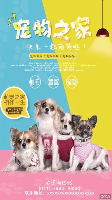 宠物之家宣传海报