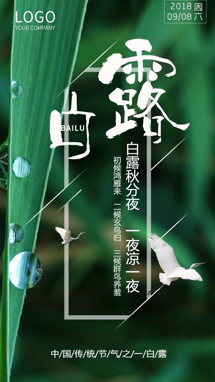 白露节气企业宣传推广海报