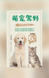 棕色可爱宠物店宣传H5