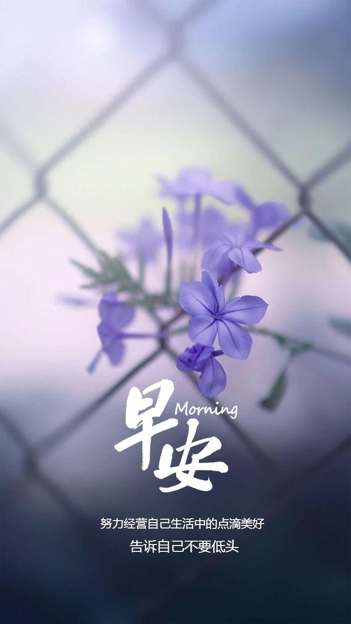 小清新文艺风早安日签早安祝福