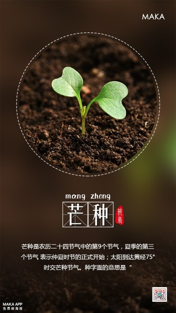 芒种二十四节气海报 宣传促销打折通用 二维码朋友圈贺卡创意海报手机海报