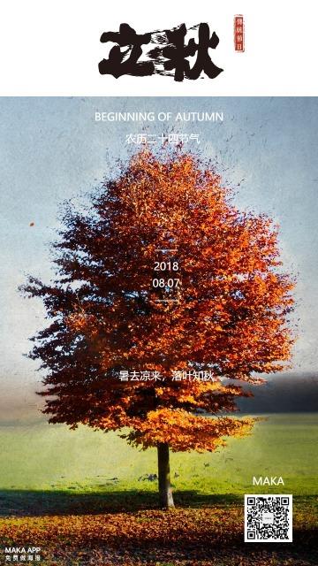 立秋秋色大树二十四节气