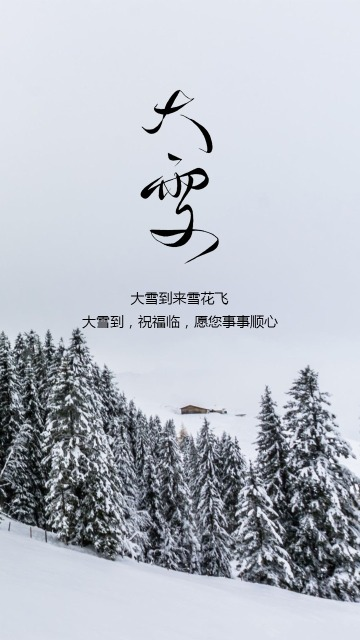 简约风传统二十四节气大雪时节