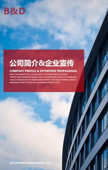 蓝红高端公司简介介绍招聘企业