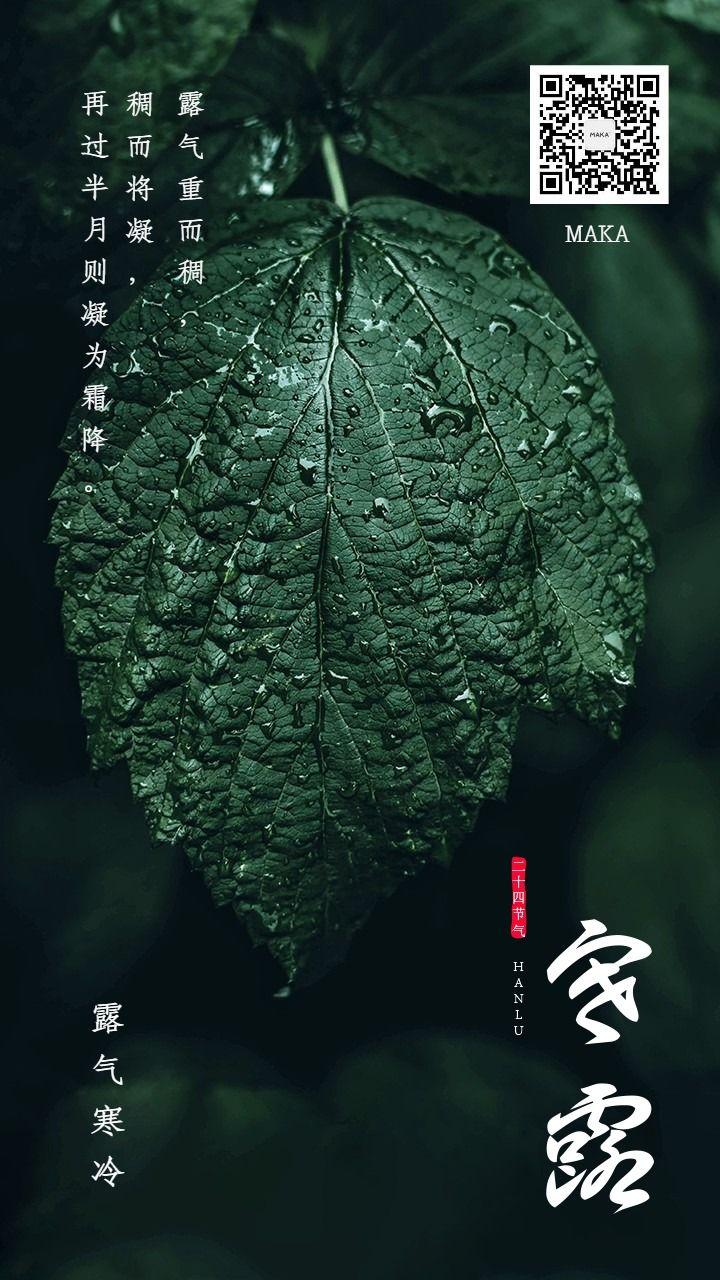 寒露节九月节绿色叶子露水海报