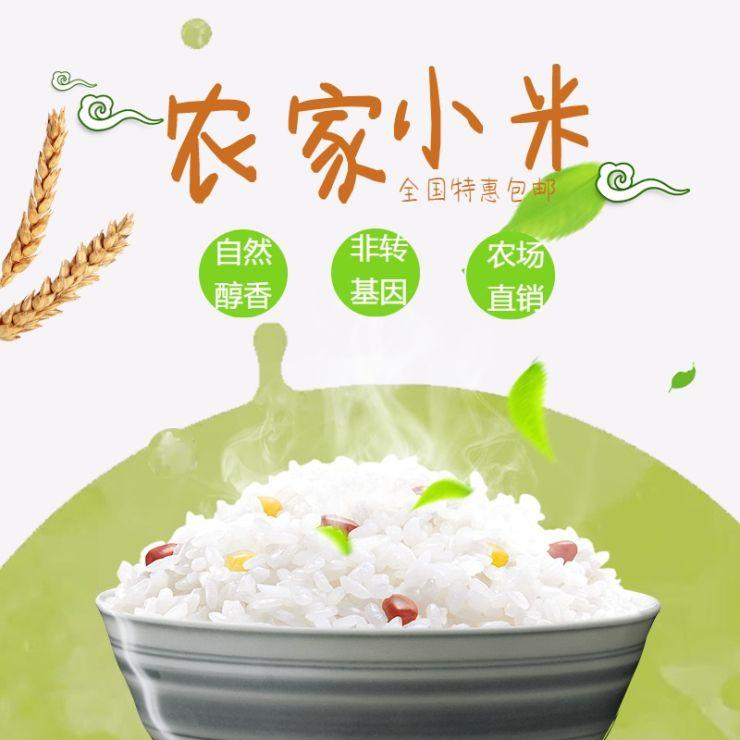清新简约百货零售五谷杂粮农场大米促销电商主图