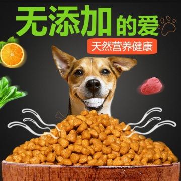 扁平简约百货零售天然美味狗粮促销电商主图