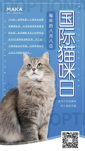 蓝色简约实物风格国际猫咪日宣传海报