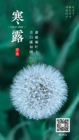 2019寒露绿色简约大气企业节气宣传海报