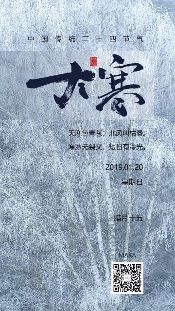 大寒节气天寒地冻白色梦幻简约大气海报