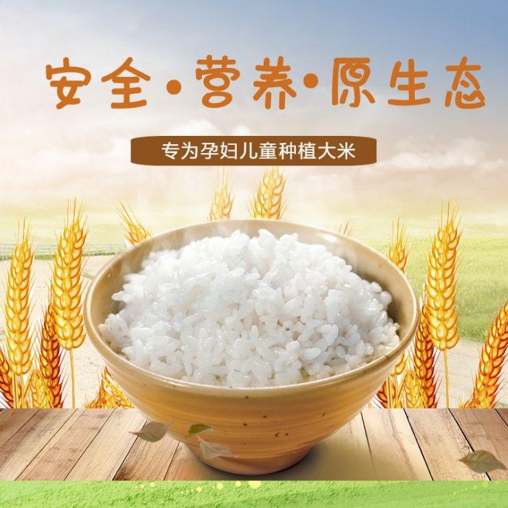 清新简约百货零售五谷杂粮营养大米促销电商主图